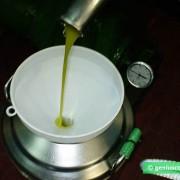 Olio d'oliva extravergtine prima spremitura a freddo