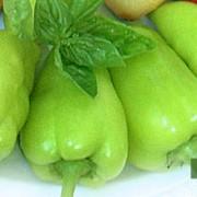 Peperone dolce e aterosclerosi