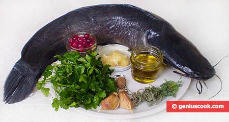 Ingredienti per il siluro con salsa di mirtilli rossi