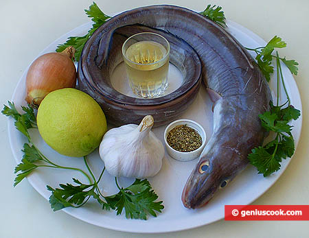 Ingredienti per il grongo alla griglia