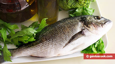 Pesce, erbe aromatiche, vino e olio d'oliva extravergine