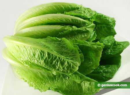 Verdura a foglia verde  (Lattuga romana)