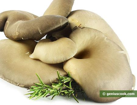 Funghi freschi della varietà pleurotus.
