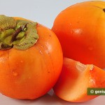 Cachi, varietà vaniglia o, cachi mela
