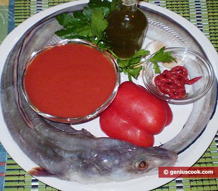 Ingredienti per il Grongo al pomodoro