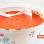 Gazpacho, salsa o zuppa di ortaggi crudi