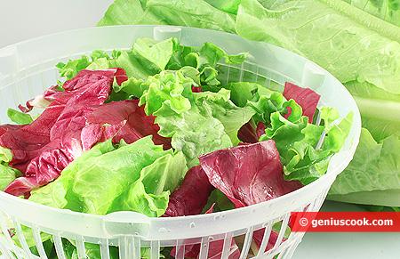 Foglie di insalata nella centrifuga