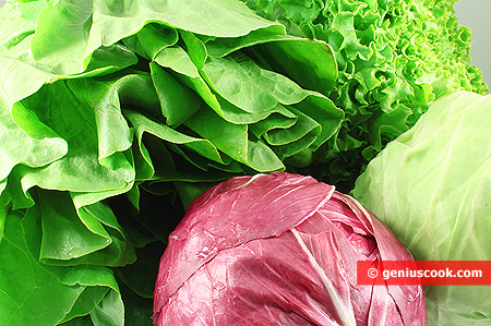 Lattuga e altre verdure