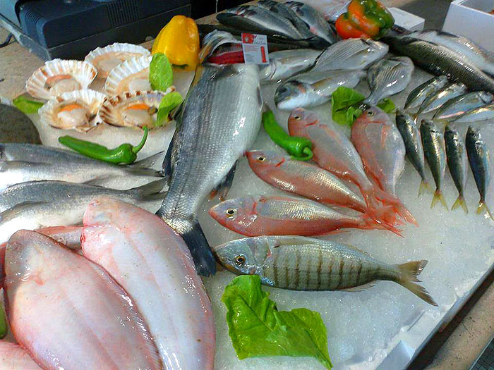 fishs1